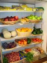Freshest fruits and vegetables, salads like chicken, tuna or seafood